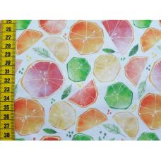 "Bio-Jerseystoff ""Citrus Watercolor bunt/orange"""
